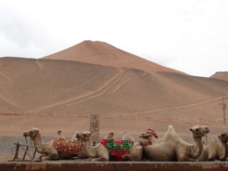Authentic Silk Road Journey of a Lifetim...